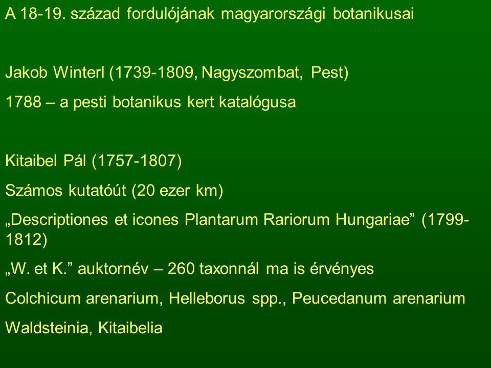 A 18-19. század fordulójának magyarországi botanikusai Jakob Winterl (1739-1809, Nagyszombat, Pest) 1788 – a pesti botanikus kert katalógusa Kitaibel