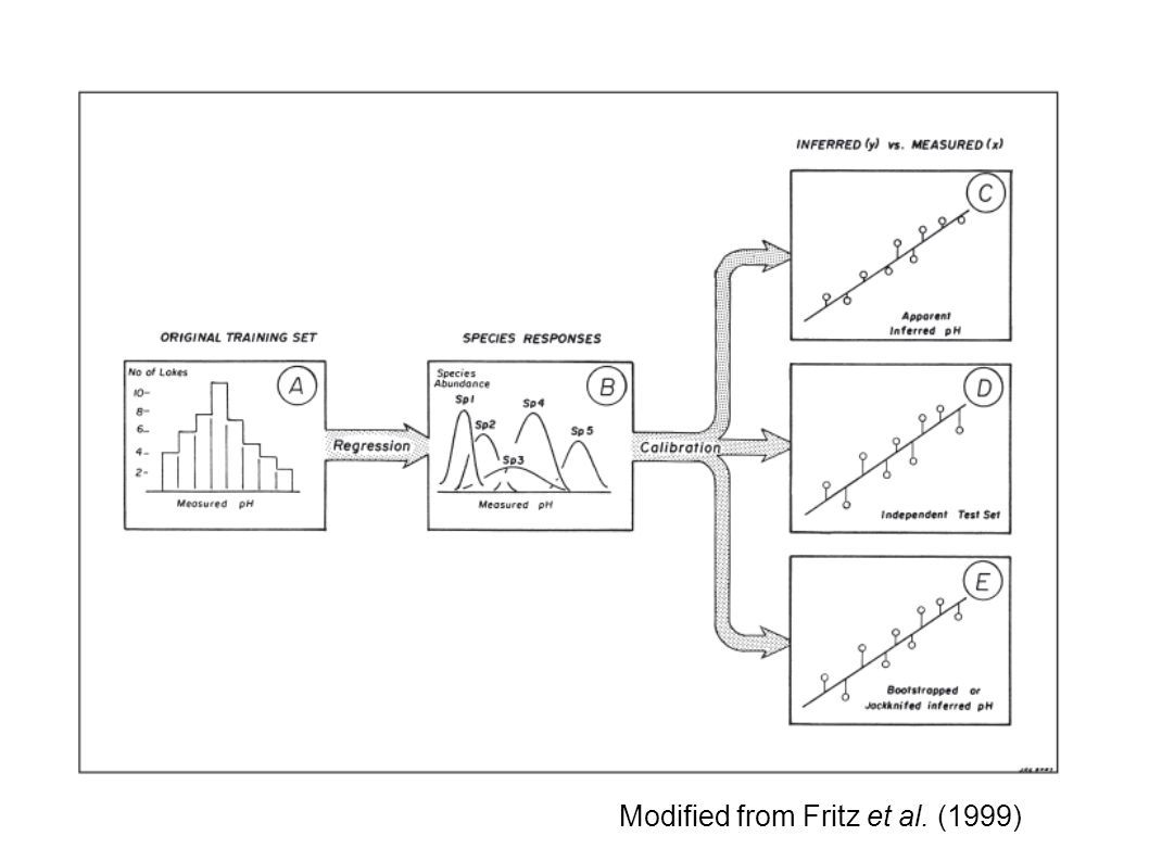 Modified from Fritz et al. (1999)‏