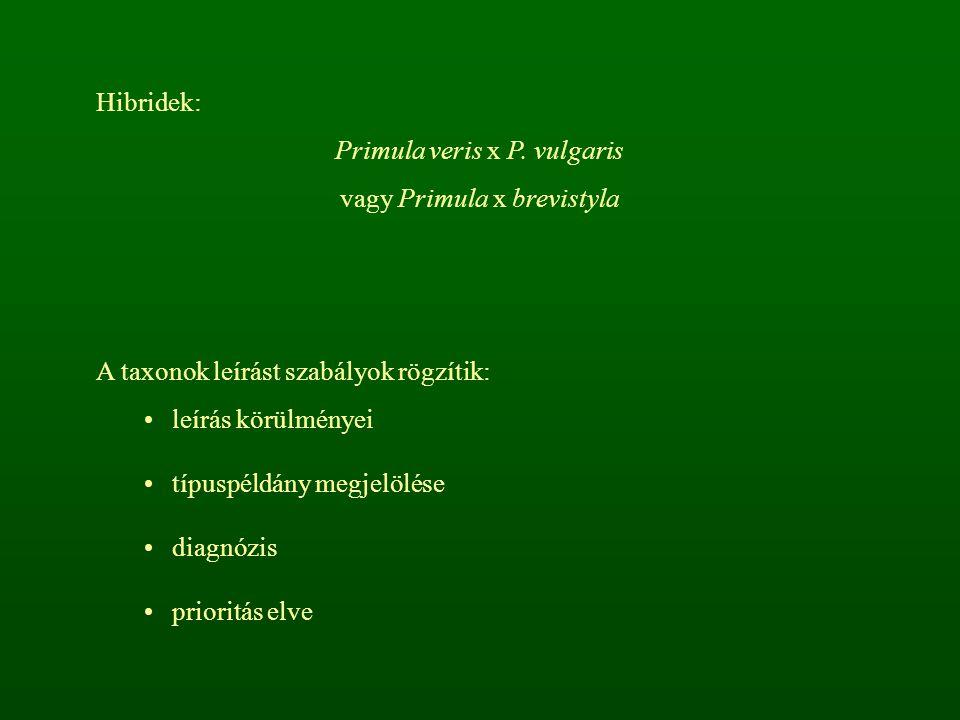 Hibridek: Primula veris x P. vulgaris vagy Primula x brevistyla A taxonok leírást szabályok rögzítik: leírás körülményei típuspéldány megjelölése diag