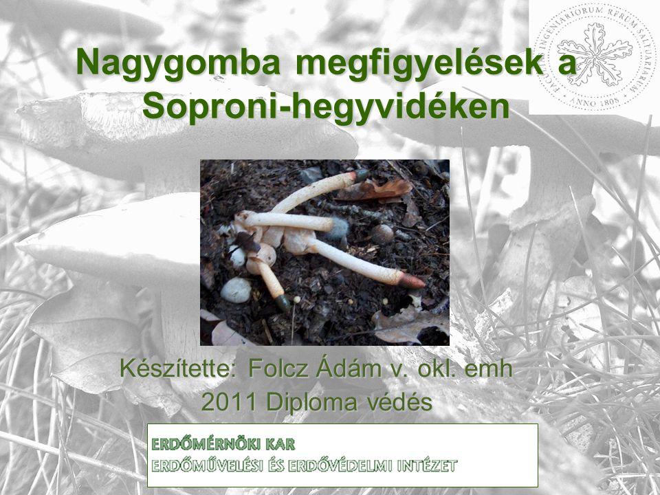 Nagygomba megfigyelések a Soproni-hegyvidéken Készítette: Folcz Ádám v. okl. emh 2011 Diploma védés