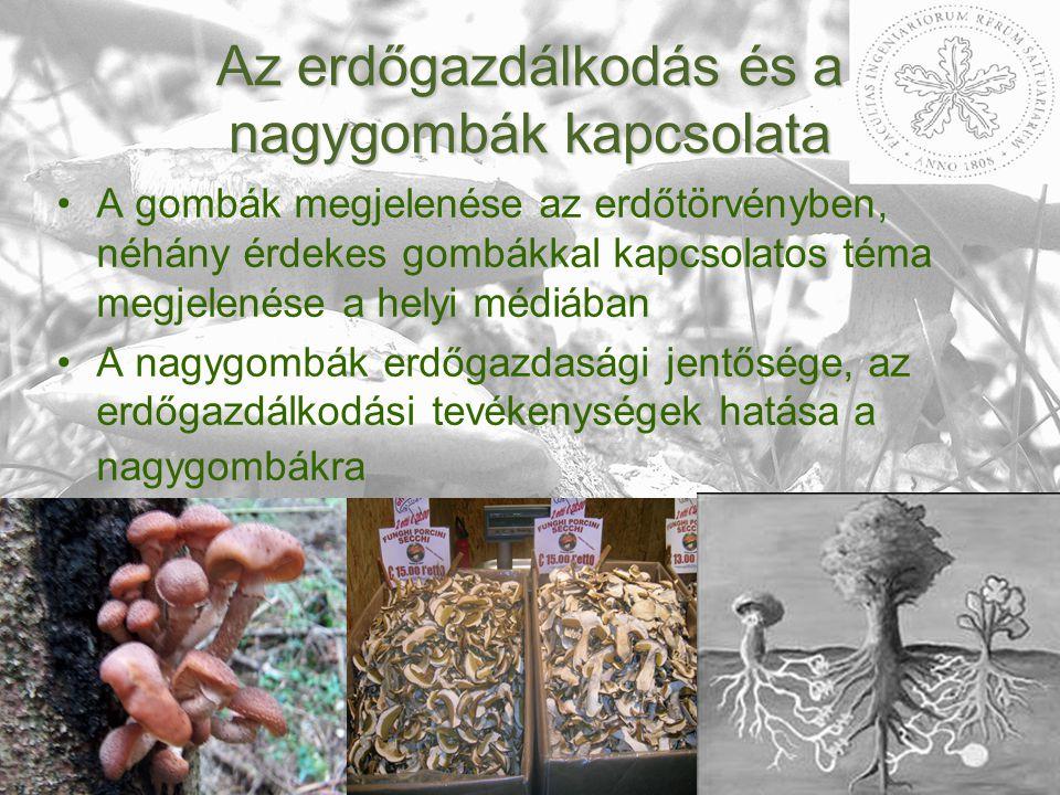 Az erdőgazdálkodás és a nagygombák kapcsolata A gombák megjelenése az erdőtörvényben, néhány érdekes gombákkal kapcsolatos téma megjelenése a helyi médiában A nagygombák erdőgazdasági jentősége, az erdőgazdálkodási tevékenységek hatása a nagygombákra