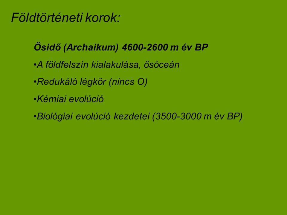 Ősidő (Archaikum) 4600-2600 m év BP A földfelszín kialakulása, ősóceán Redukáló légkör (nincs O) Kémiai evolúció Biológiai evolúció kezdetei (3500-300