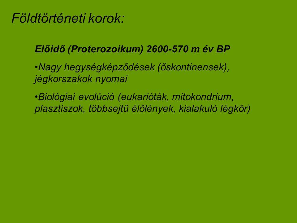 Előidő (Proterozoikum) 2600-570 m év BP Nagy hegységképződések (őskontinensek), jégkorszakok nyomai Biológiai evolúció (eukarióták, mitokondrium, plas