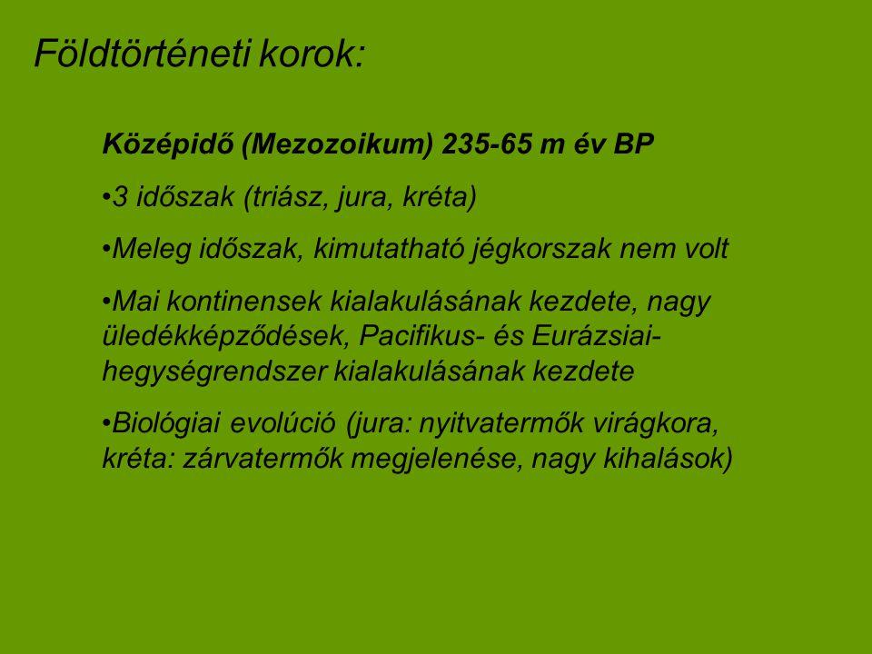 Földtörténeti korok: Középidő (Mezozoikum) 235-65 m év BP 3 időszak (triász, jura, kréta) Meleg időszak, kimutatható jégkorszak nem volt Mai kontinens
