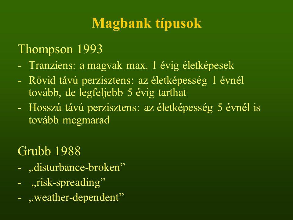 Magbank típusok Thompson 1993 -Tranziens: a magvak max. 1 évig életképesek -Rövid távú perzisztens: az életképesség 1 évnél tovább, de legfeljebb 5 év