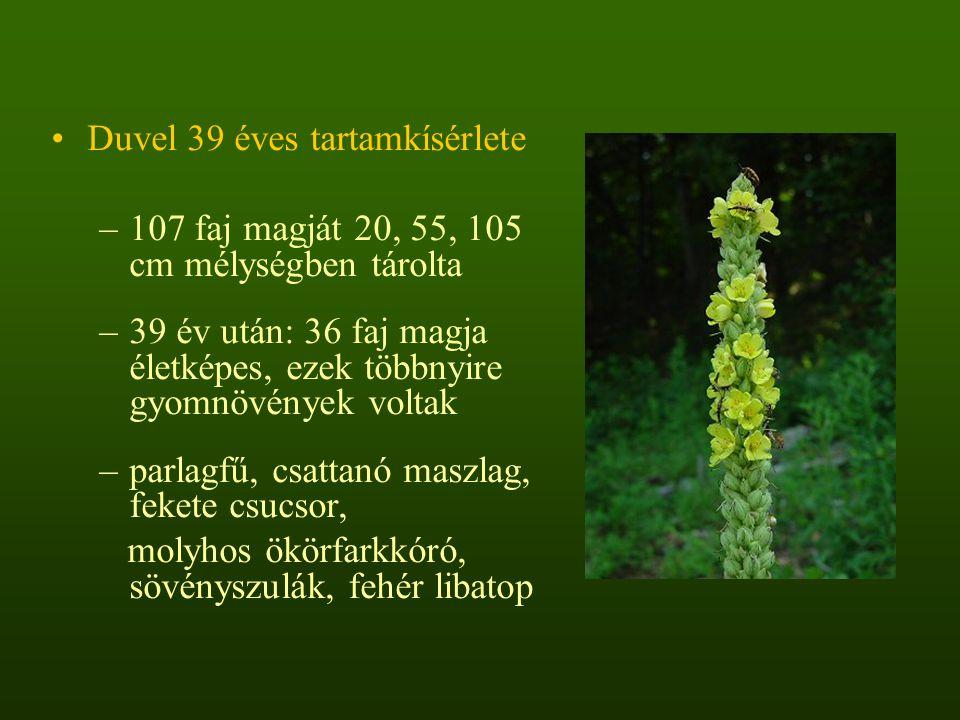 120 (vágásterületeken és erdei utak mentén előforduló) faj parcellánként vett viselkedésének gyakoriság eloszlása az előfordulási kategóriáik szerint