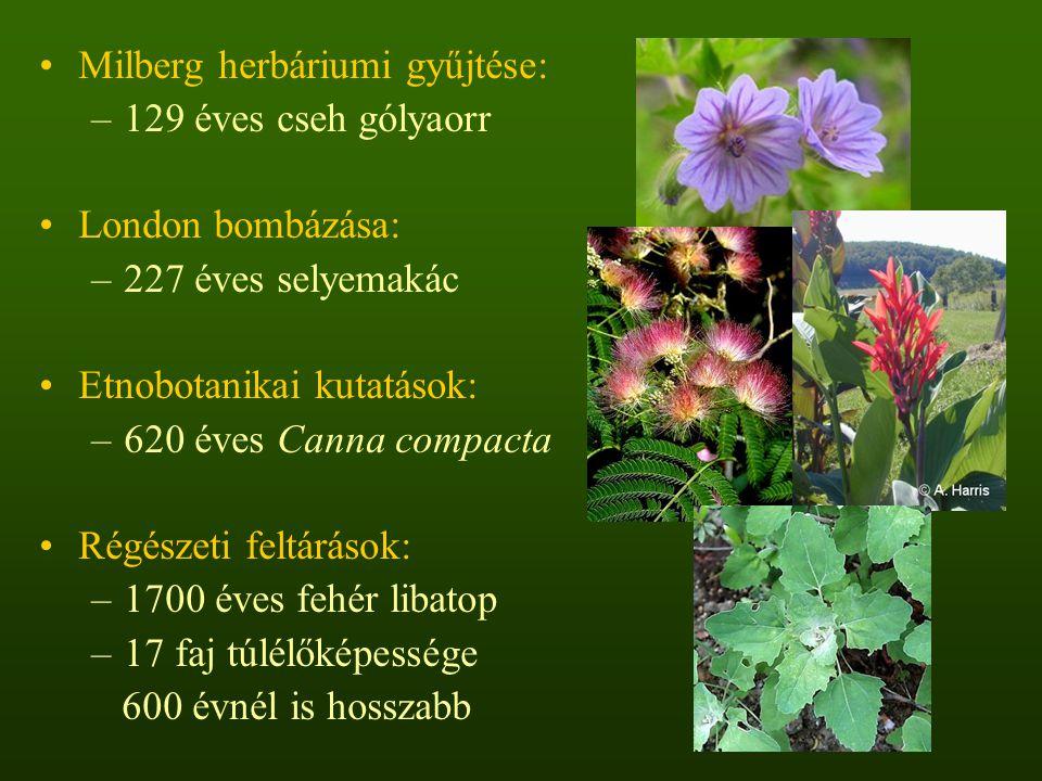 Milberg herbáriumi gyűjtése: –129 éves cseh gólyaorr London bombázása: –227 éves selyemakác Etnobotanikai kutatások: –620 éves Canna compacta Régészet