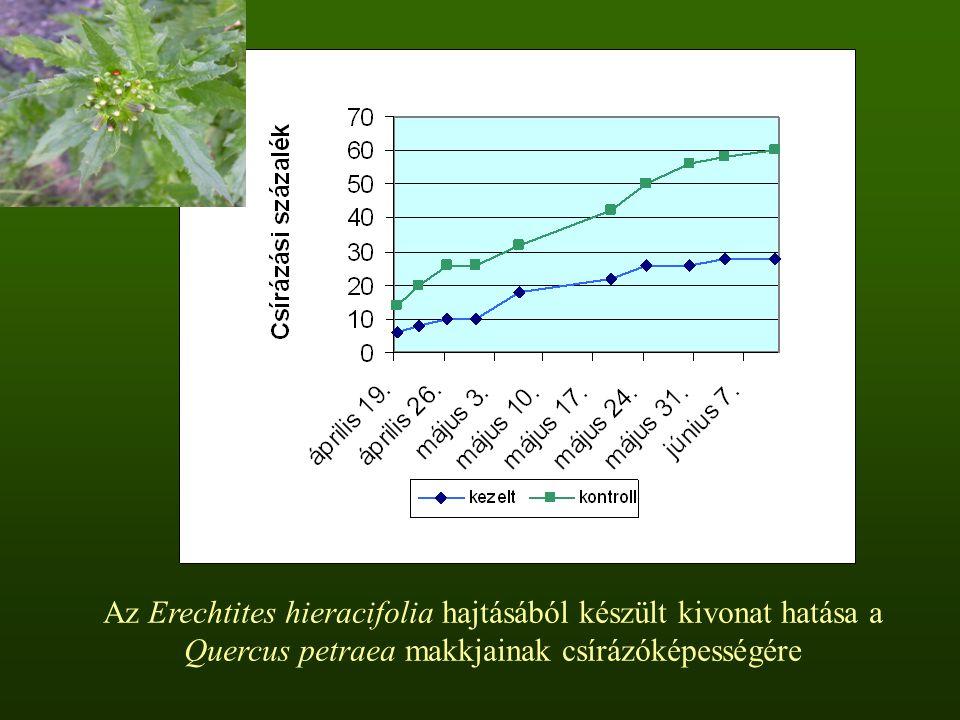 Az Erechtites hieracifolia hajtásából készült kivonat hatása a Quercus petraea makkjainak csírázóképességére