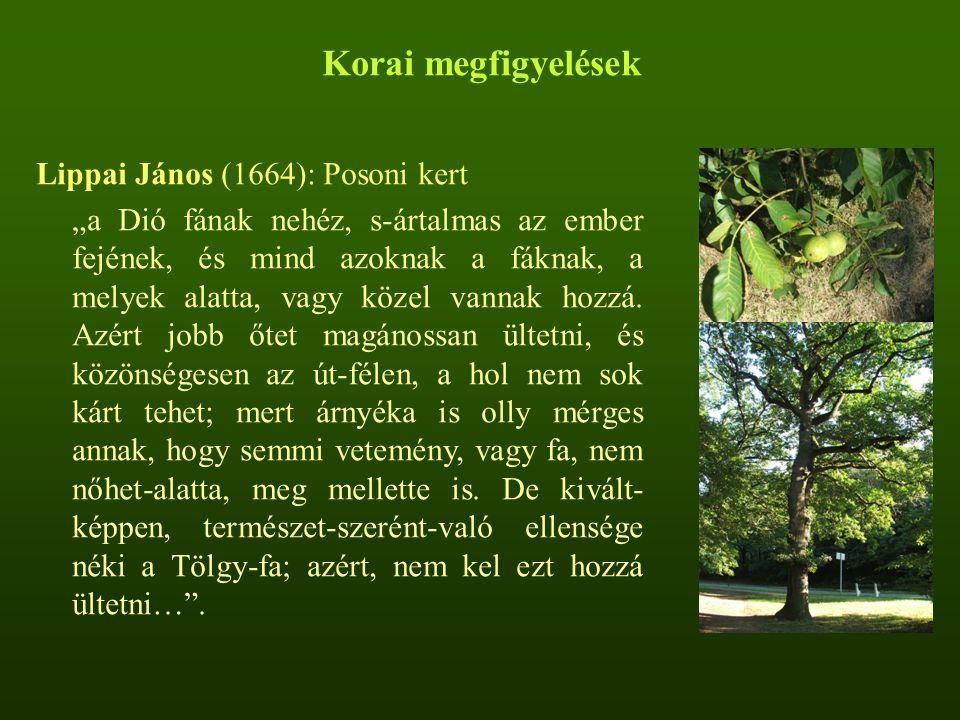 """Lippai János (1664): Posoni kert """"a Dió fának nehéz, s-ártalmas az ember fejének, és mind azoknak a fáknak, a melyek alatta, vagy közel vannak hozzá."""