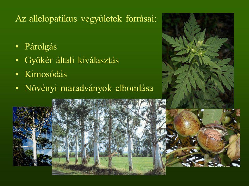 Juglon index A juglon a közönséges dió és a fekete dió mellett a Juglandaceae család több tagjából is kimutatott erősen allelopatikus hatású naftokinon, amely a csapadékkal kimosódva a talajba kerül Számos növényfajra nézve csírázásgátló hatású, gátló hatását a fotoszintézis és a légzés intenzitásának csökkentésén és az oxidatív stressz növelésén keresztül éri el A juglon index (Szabó 1999) az ismeretlen allelopatikus potenciálú növényfajból készített kivonattal, illetve az 1 mM-os juglonnal történő kezelés hatásának összehasonlításán alapul A juglonnal, valamint az ismeretlen allelopatikus potenciálú növényfajból készített kivonattal kezelt tesztnövény, a fehér mustár (Sinapis alba L.) csírázási százalékából, gyökér- és hajtáshosszúságából képzett hányados határozza meg a juglon indexet.