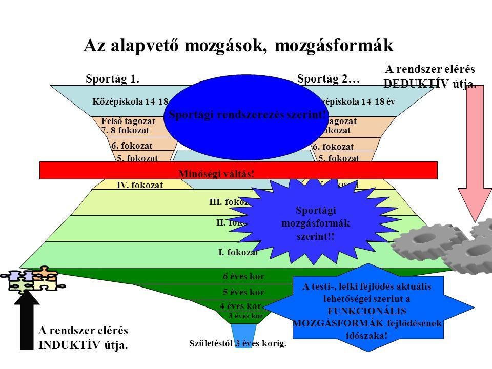A világ megismerésének igénye által generált funkcionális mozgásformák.
