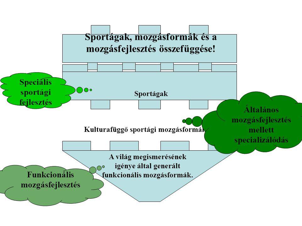 A CÉL, FELADAT, GYAKORLAT strukturálása, tervezése I.