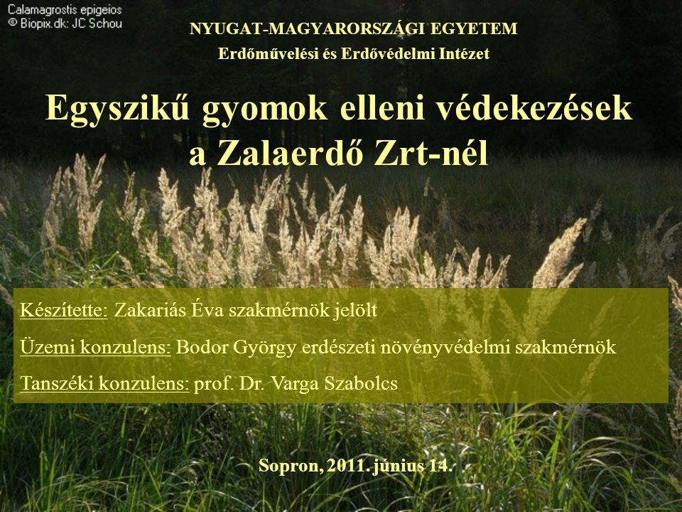 Egyszikű gyomok elleni védekezések a Zalaerdő Zrt-nél NYUGAT-MAGYARORSZÁGI EGYETEM Erdőművelési és Erdővédelmi Intézet Készítette: Zakariás Éva szakmé