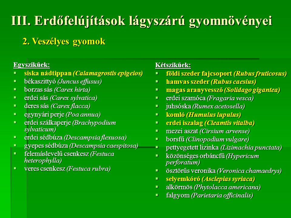 III. Erdőfelújítások lágyszárú gyomnövényei Egyszikűek:  siska nádtippan (Calamagrostis epigeios)  békaszittyó (Juncus effusus)  borzas sás (Carex