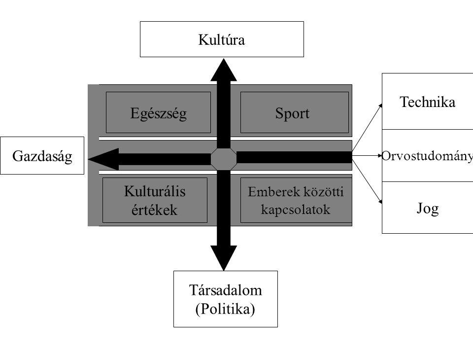Kultúra EgészségSport Kulturális értékek Emberek közötti kapcsolatok Gazdaság Társadalom (Politika) Technika Orvostudomány Jog