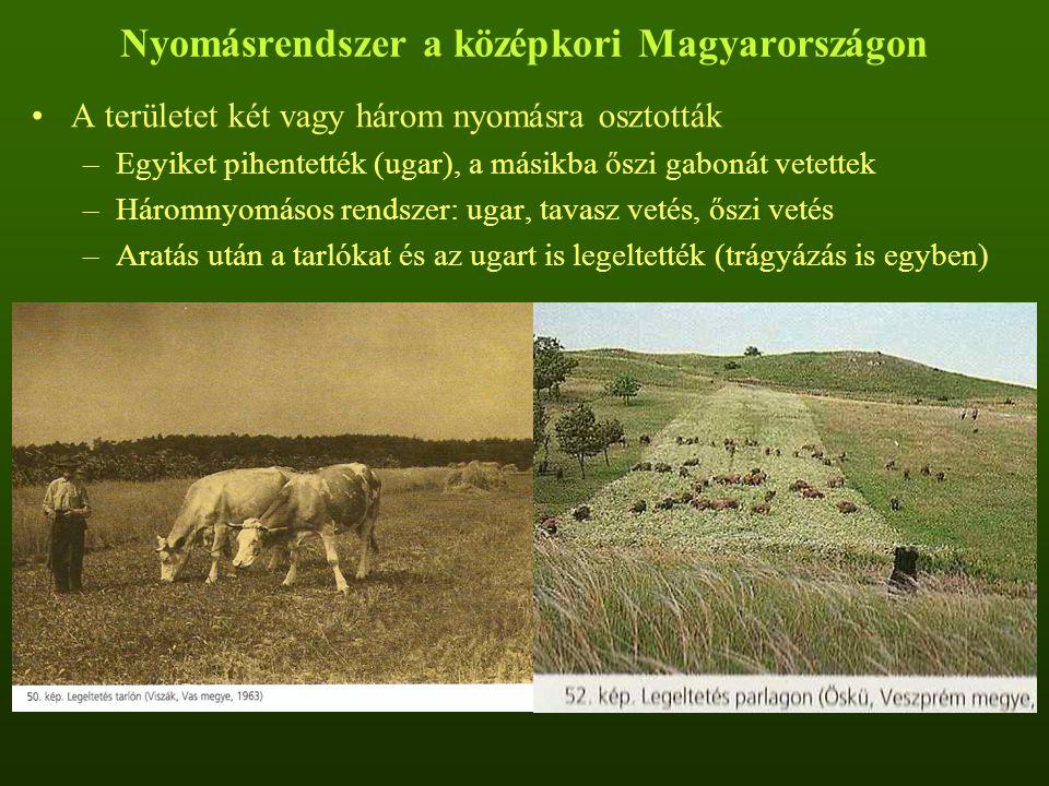 Nyomásrendszer a középkori Magyarországon A területet két vagy három nyomásra osztották –Egyiket pihentették (ugar), a másikba őszi gabonát vetettek –