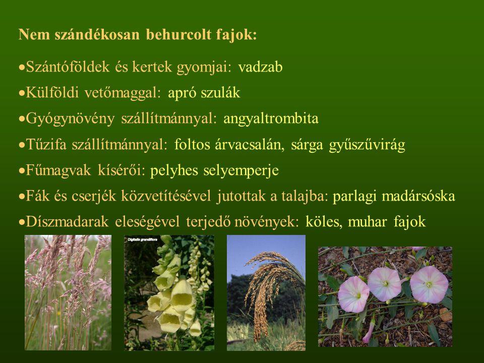 Nem szándékosan behurcolt fajok:  Szántóföldek és kertek gyomjai: vadzab  Külföldi vetőmaggal: apró szulák  Gyógynövény szállítmánnyal: angyaltromb