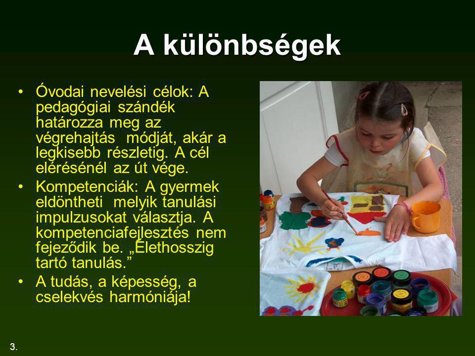 3. A különbségek Óvodai nevelési célok: A pedagógiai szándék határozza meg az végrehajtás módját, akár a legkisebb részletig. A cél elérésénél az út v