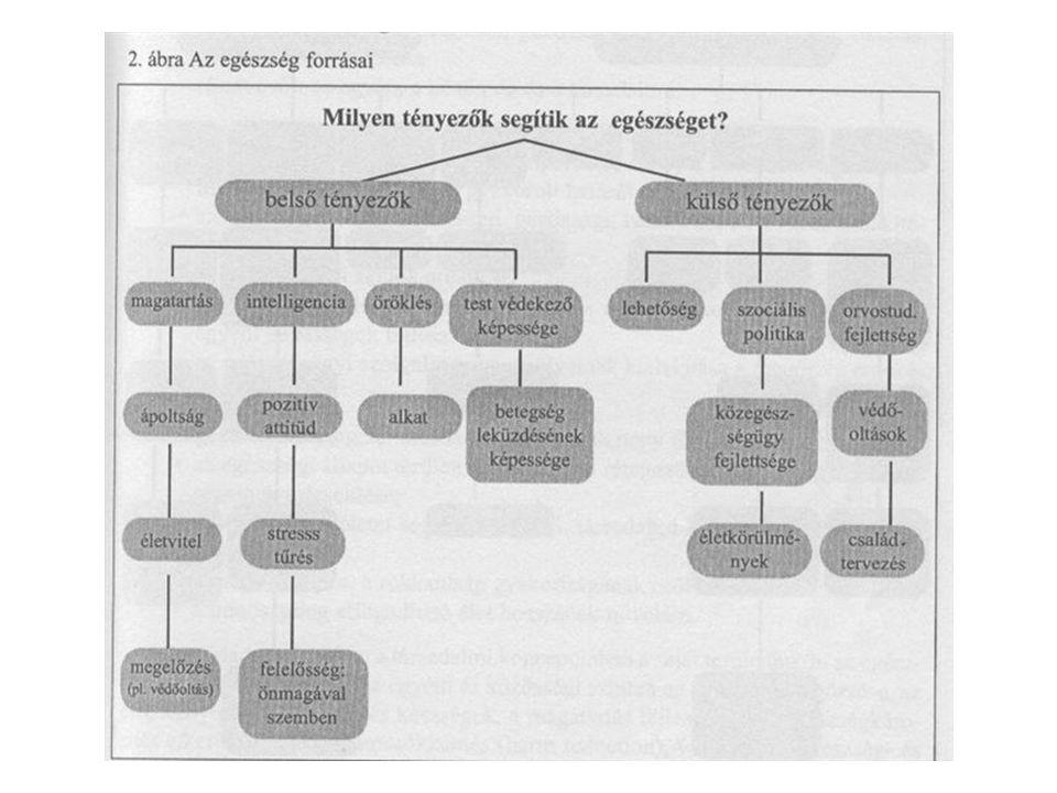 Az intézmények szerepe az egészségnevelésben Az egészségértékek kialakítása –Magatartások, életvezetési szokások –Aktív és passzív pihenési szokások –Nemi szerepek –Köznevelés A pszichoszociális fejlődés szakaszai –Adaptáció (0-6 hónap) –Első szocializáció 6-18 hónap) –Autonóm individualizáció (18-36 hónap) –Identifikáció 3-7 év) –Tudatosság (7-12 év) –Második szocializáció (12-17 év) –Heteronóm individualizáció (17-25 év)