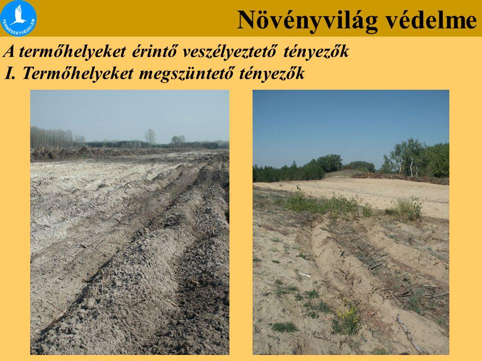 I. Termőhelyeket megszüntető tényezők A termőhelyeket érintő veszélyeztető tényezők Növényvilág védelme