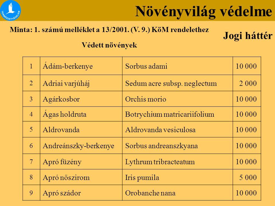 A magyarországi edényes flóra veszélyeztetettsége (Vörös Lista, 2007) K (Kipusztult) KV (Kipusztulással) AV (Aktuálisan) PV (Potenciálisan) Összesen veszélyeztetett Harasztok 3 10618 37 Nyitvatermők - - - 2 2 Zárvatermők44105156421726 Összesen47115162441765 A teljes flóra arányában (%) 2,25,37,420,235,1 Vörös Könyv és Vörös Lista Növényvilág védelme