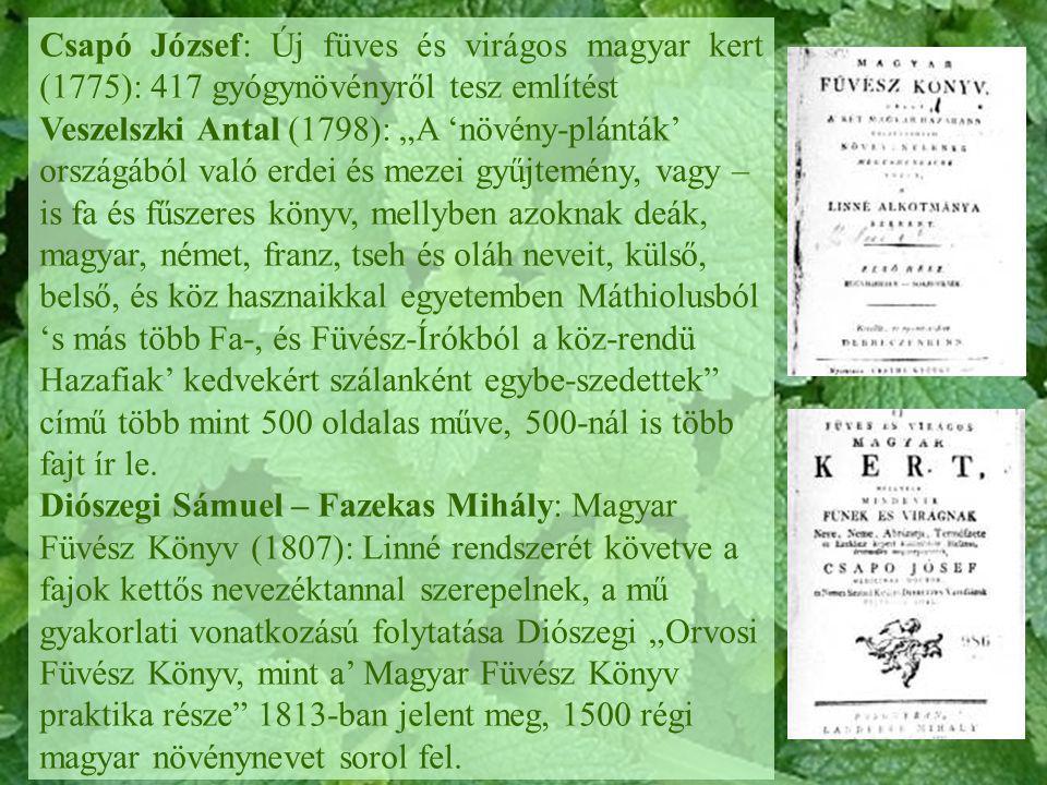 """Csapó József: Új füves és virágos magyar kert (1775): 417 gyógynövényről tesz említést Veszelszki Antal (1798): """"A 'növény-plánták' országából való er"""