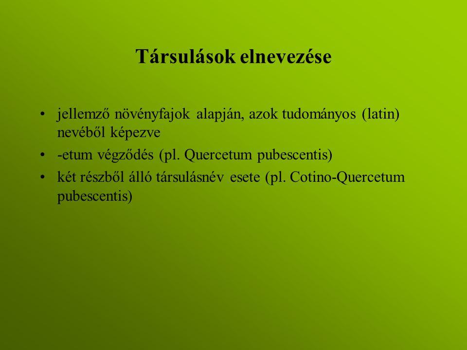 Társulások elnevezése jellemző növényfajok alapján, azok tudományos (latin) nevéből képezve -etum végződés (pl. Quercetum pubescentis) két részből áll