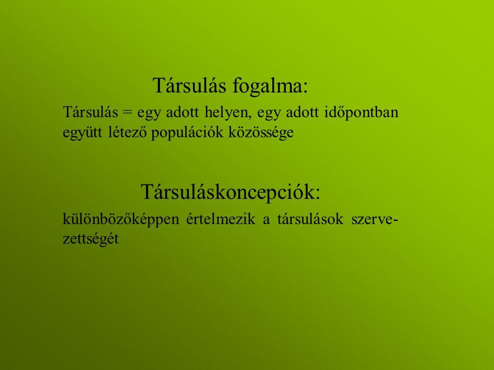 Transzekt-felvételezés - példa