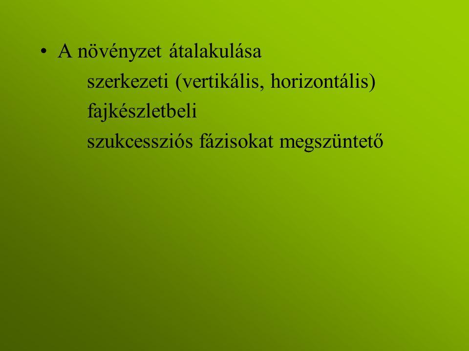 A növényzet átalakulása szerkezeti (vertikális, horizontális) fajkészletbeli szukcessziós fázisokat megszüntető