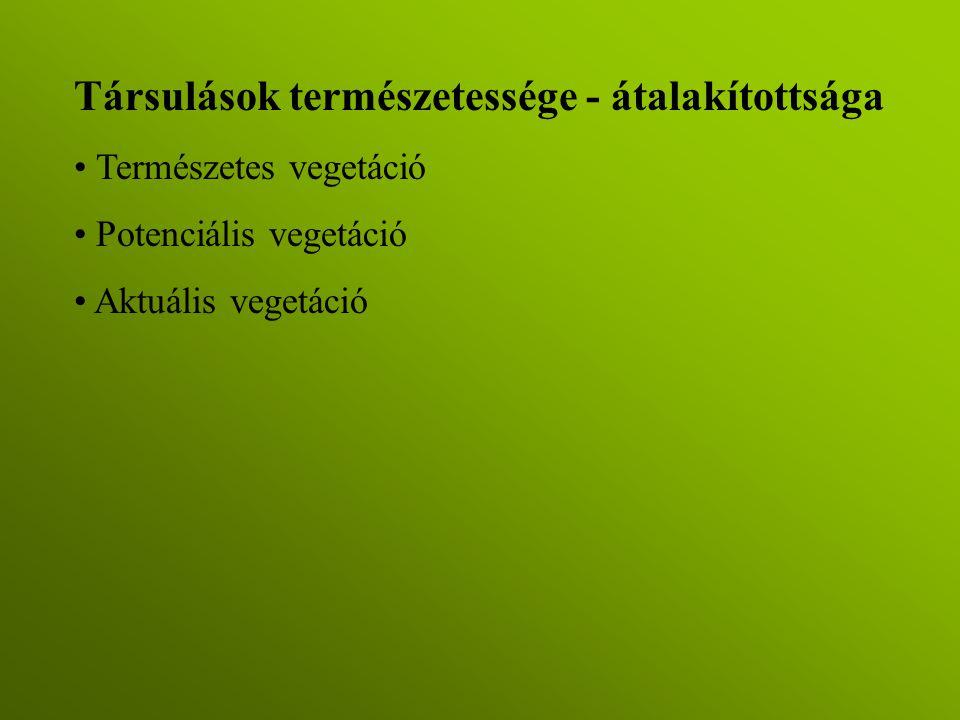 Társulások természetessége - átalakítottsága Természetes vegetáció Potenciális vegetáció Aktuális vegetáció
