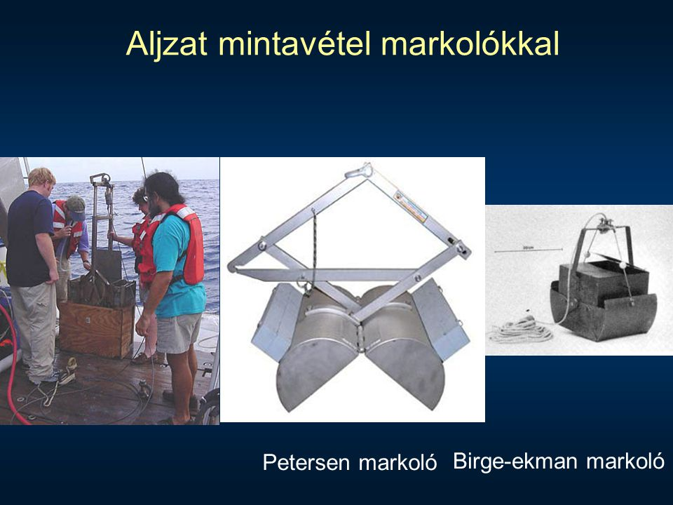 Aljzat mintavétel markolókkal Petersen markoló Birge-ekman markoló