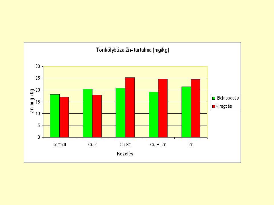 Pohánka, vagy hajdina (3000 éve ismert) Jelentősége: 1.Táplálkozás (jó összetétel) -Humán táplálkozás, liszt (kenyér, sütemény) -Lisztérzékenyek is fogyaszthatják Beltartalma: keményítő %= 60-70 élelmi rost % = 20-25 (cellulóz, lignin,hemicellulóz) fehérje % = 8-14 (búzánál 10 %)