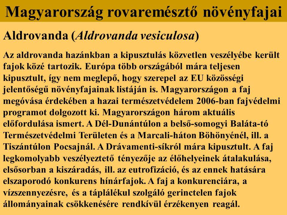 Aldrovanda (Aldrovanda vesiculosa) Az aldrovanda hazánkban a kipusztulás közvetlen veszélyébe került fajok közé tartozik. Európa több országából mára