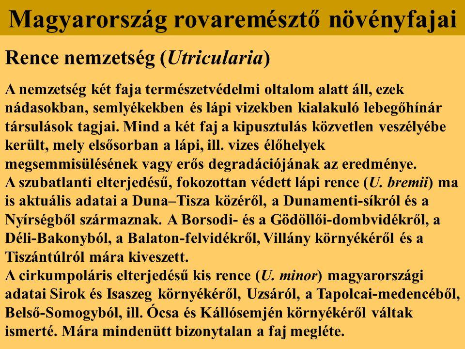 Rence nemzetség (Utricularia) A nemzetség két faja természetvédelmi oltalom alatt áll, ezek nádasokban, semlyékekben és lápi vizekben kialakuló lebegő
