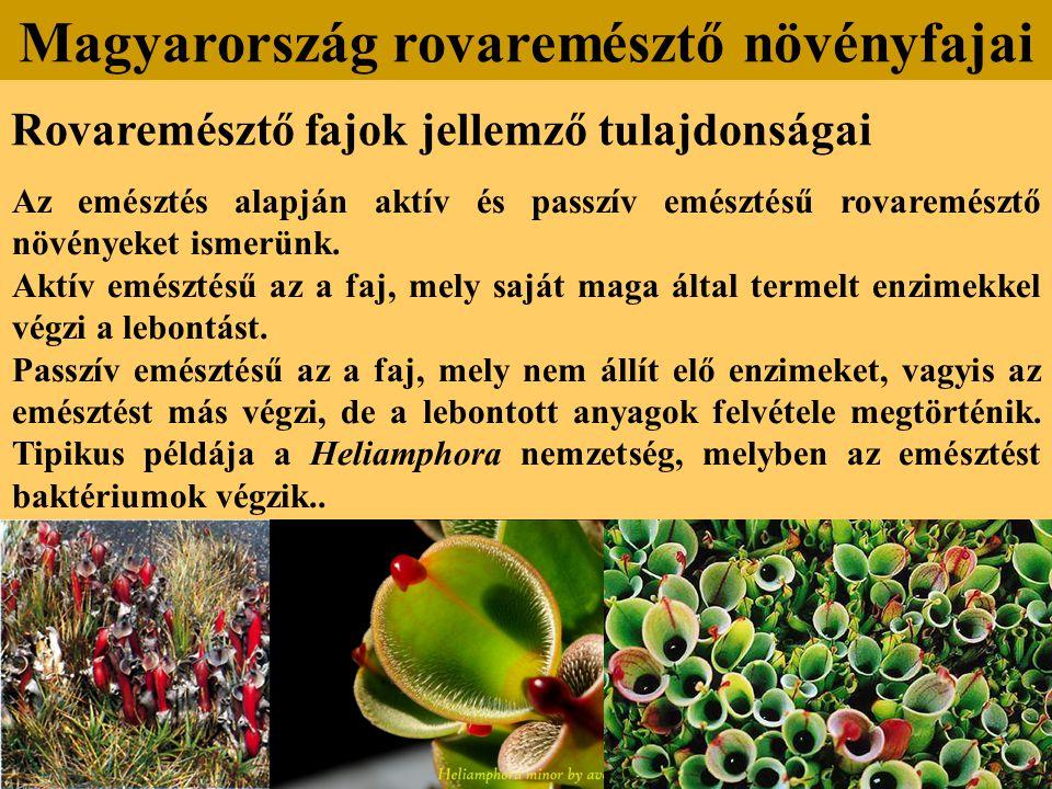 Rovaremésztő fajok jellemző tulajdonságai Az emésztés alapján aktív és passzív emésztésű rovaremésztő növényeket ismerünk. Aktív emésztésű az a faj, m