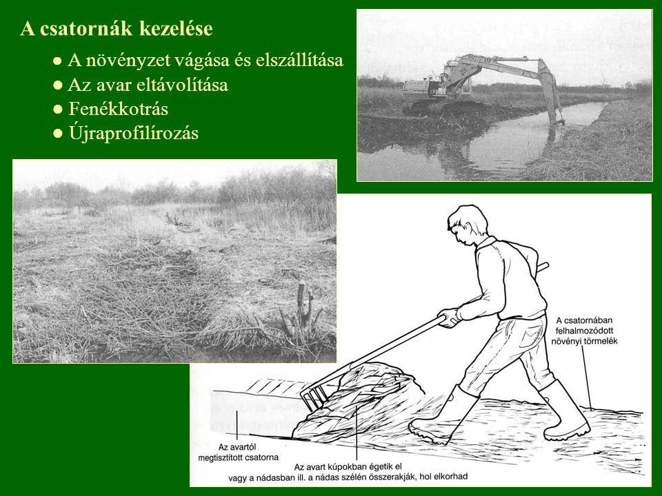 A csatornák kezelése ● A növényzet vágása és elszállítása ● Az avar eltávolítása ● Fenékkotrás ● Újraprofilírozás