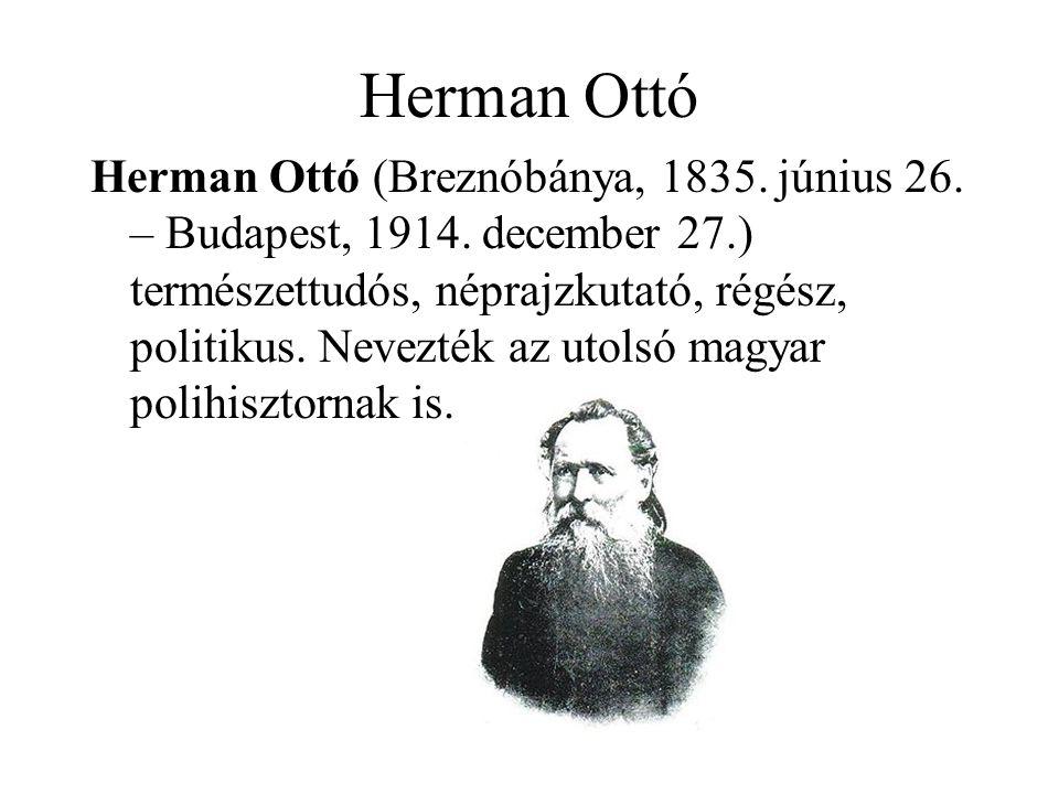 Herman Ottó Herman Ottó (Breznóbánya, 1835. június 26. – Budapest, 1914. december 27.) természettudós, néprajzkutató, régész, politikus. Nevezték az u