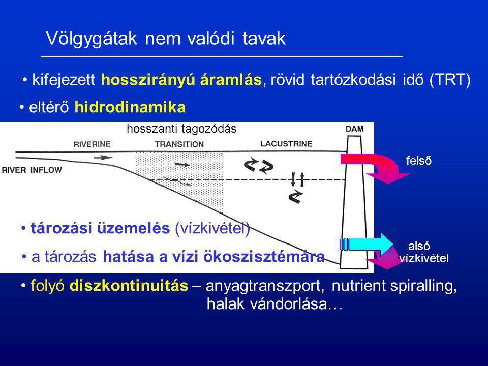 Völgygátak nem valódi tavak kifejezett hosszirányú áramlás, rövid tartózkodási idő (TRT) eltérő hidrodinamika hosszanti tagozódás tározási üzemelés (v