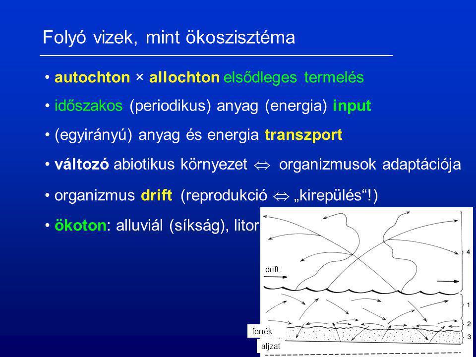 Folyó vizek, mint ökoszisztéma autochton × allochton elsődleges termelés időszakos (periodikus) anyag (energia) input organizmus drift (reprodukció 