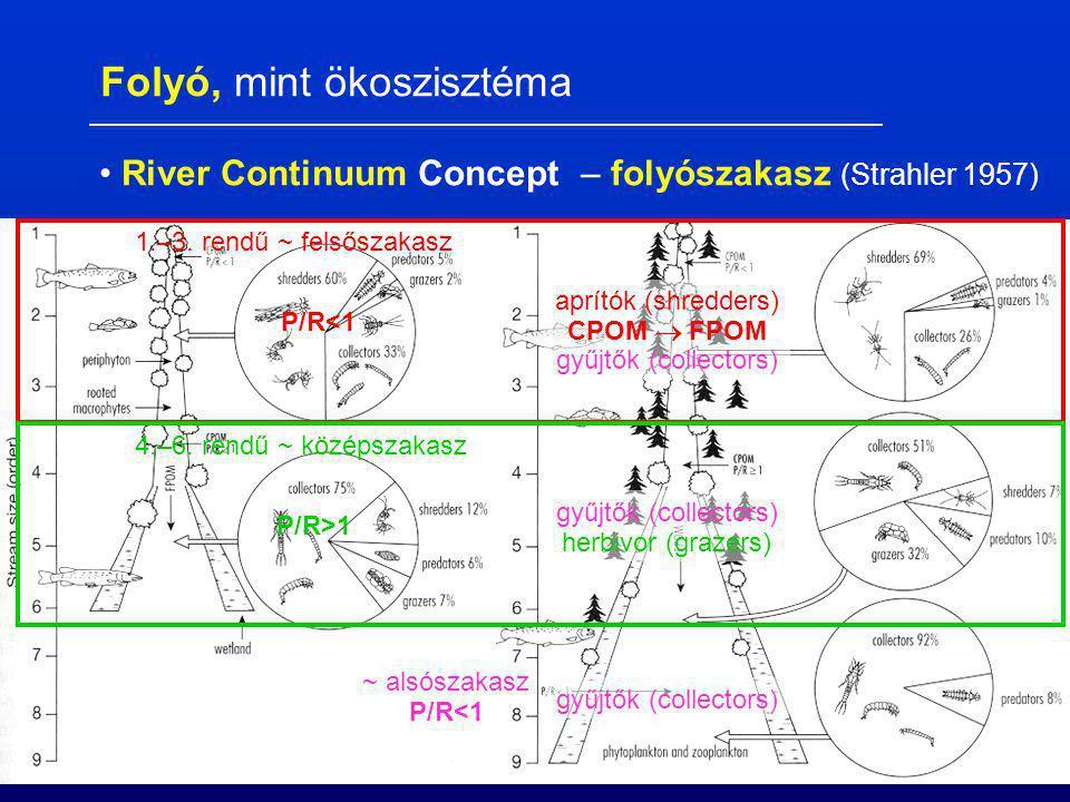 zónák, szakaszok (Frič 1872) : pisztráng szinttáj (felső szakasz) pénzes pér szinttáj (felső szakasz) márna szinttáj (középszakasz) dévérkeszeg szintt