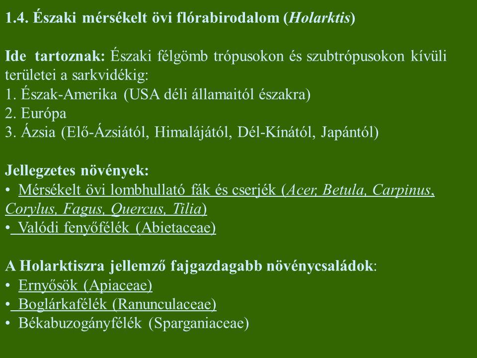 1.4. Északi mérsékelt övi flórabirodalom (Holarktis) Ide tartoznak: Északi félgömb trópusokon és szubtrópusokon kívüli területei a sarkvidékig: 1. Ész