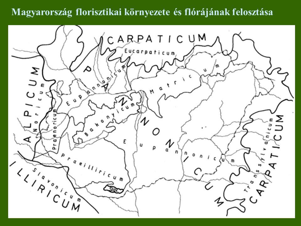 Magyarország florisztikai környezete és flórájának felosztása