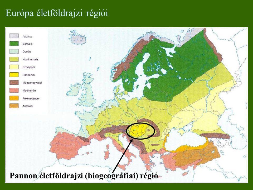 Európa életföldrajzi régiói Pannon életföldrajzi (biogeográfiai) régió