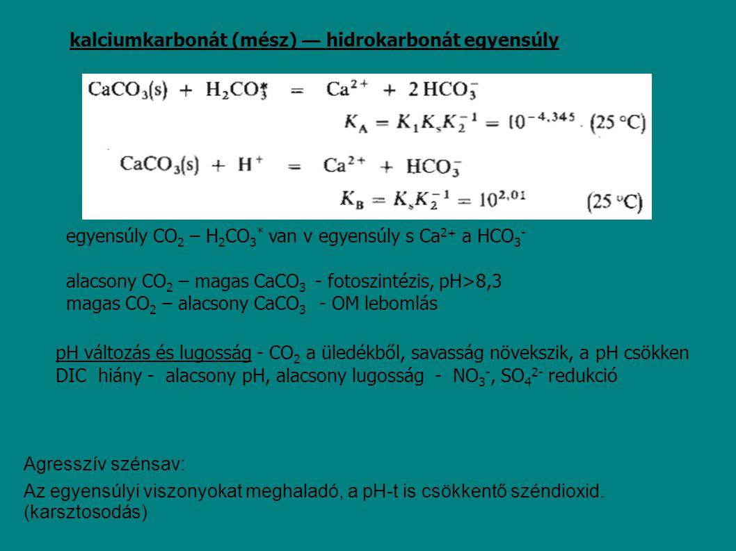 kalciumkarbonát (mész) — hidrokarbonát egyensúly egyensúly CO 2 – H 2 CO 3 * van v egyensúly s Ca 2+ a HCO 3 - alacsony CO 2 – magas CaCO 3 - fotoszin