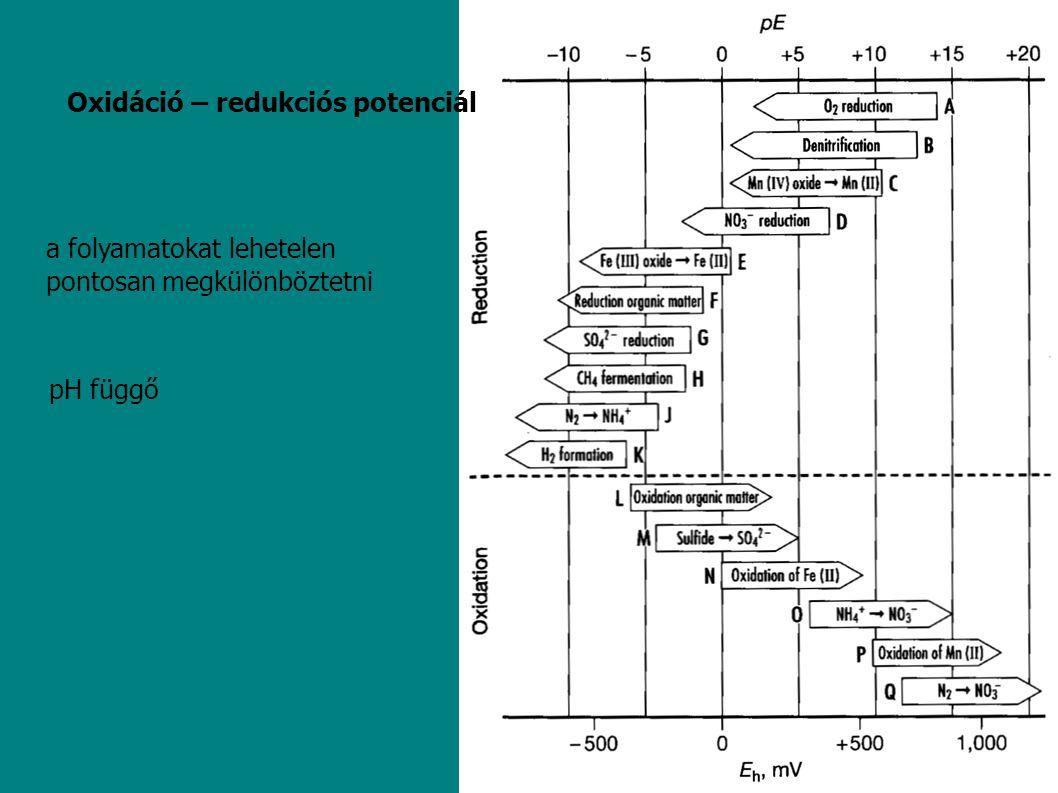 Oxidáció – redukciós potenciál pH függő a folyamatokat lehetelen pontosan megkülönböztetni
