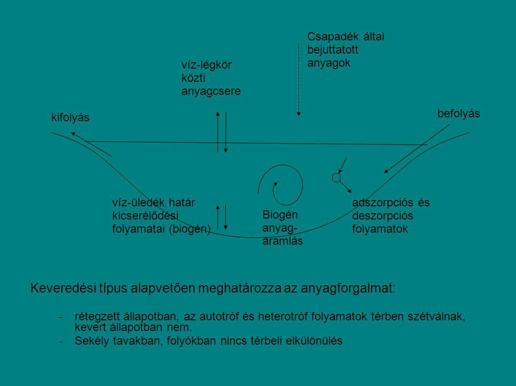 kifolyás befolyás adszorpciós és deszorpciós folyamatok víz-légkör közti anyagcsere Csapadék által bejuttatott anyagok víz-üledék határ kicserélődési