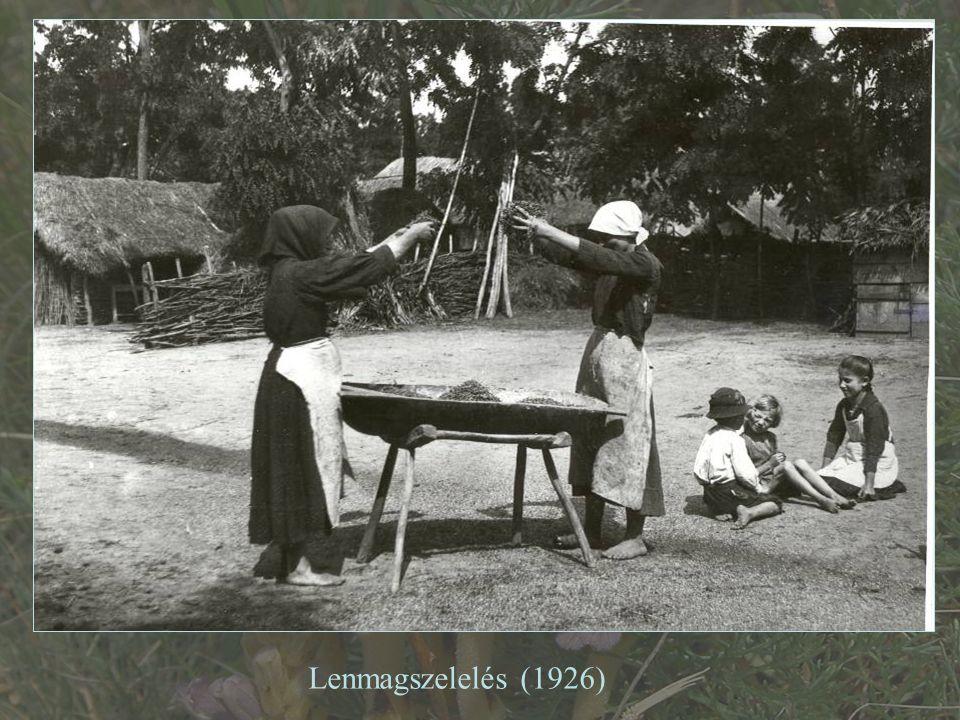 Lenmagszelelés (1926)
