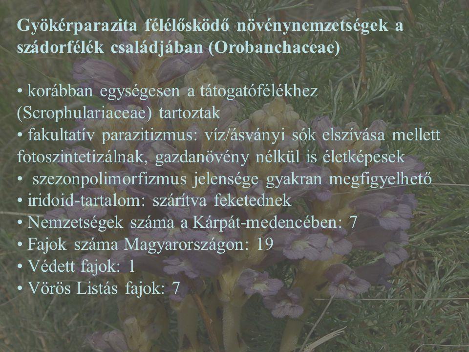 Gyökérparazita félélősködő növénynemzetségek a szádorfélék családjában (Orobanchaceae) korábban egységesen a tátogatófélékhez (Scrophulariaceae) tartoztak fakultatív parazitizmus: víz/ásványi sók elszívása mellett fotoszintetizálnak, gazdanövény nélkül is életképesek szezonpolimorfizmus jelensége gyakran megfigyelhető iridoid-tartalom: szárítva feketednek Nemzetségek száma a Kárpát-medencében: 7 Fajok száma Magyarországon: 19 Védett fajok: 1 Vörös Listás fajok: 7