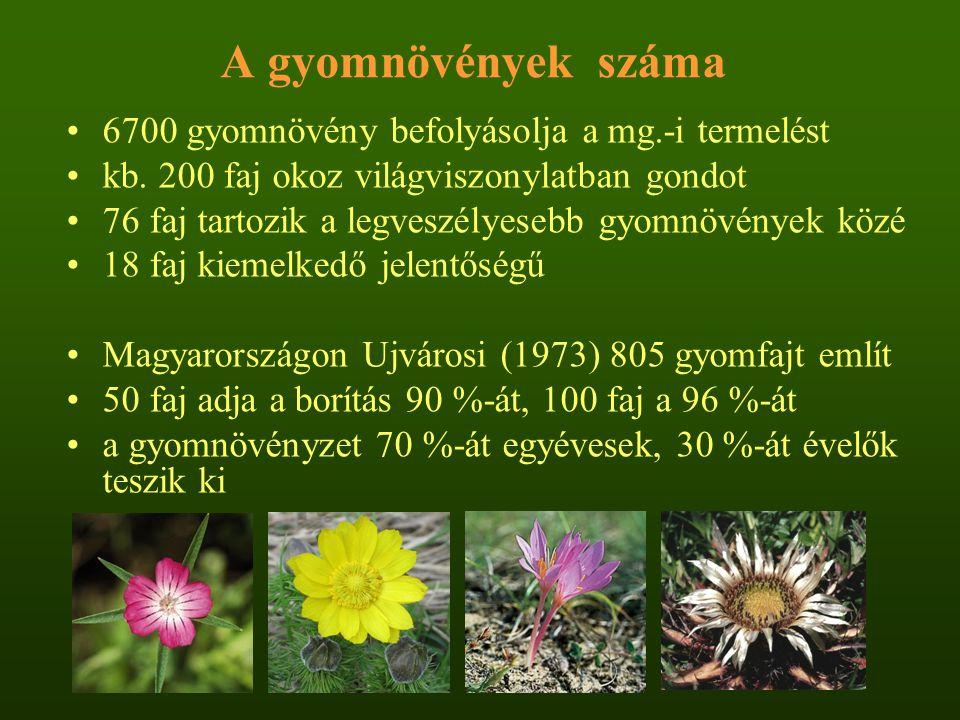 A gyomnövények száma 6700 gyomnövény befolyásolja a mg.-i termelést kb. 200 faj okoz világviszonylatban gondot 76 faj tartozik a legveszélyesebb gyomn
