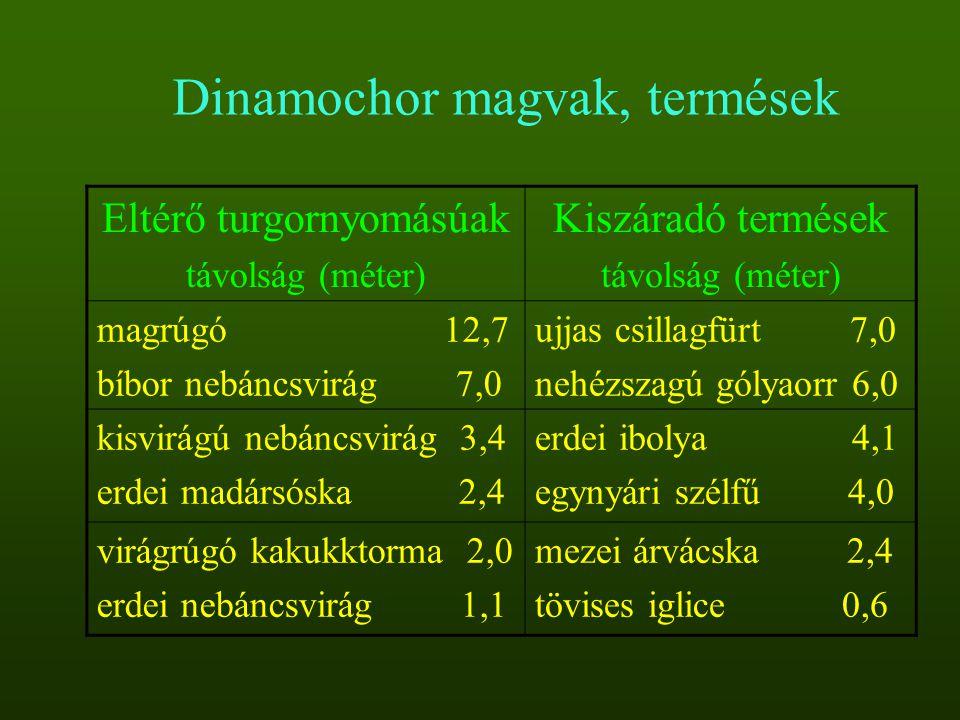 Eltérő turgornyomásúak távolság (méter) Kiszáradó termések távolság (méter) magrúgó 12,7 bíbor nebáncsvirág 7,0 ujjas csillagfürt 7,0 nehézszagú gólya